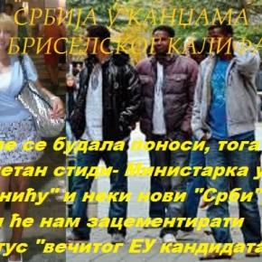 ХЕМОНД: АЗИЛАНТИ СУ ПРЕТЊА ЗА ЕУ- ЈОКСИМОВИЋ: АЗИЛАНТИ СУ ДОБРИ НАШЕЕВРОИНТЕГРАЦИЈЕ